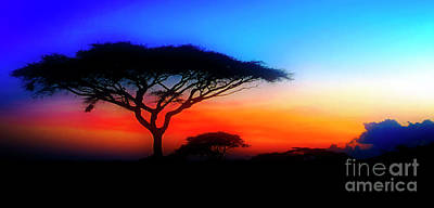 Photograph - Sunset Over The Serengeti by Scott Kemper