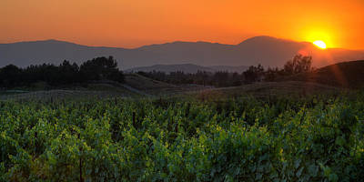 Temecula Photograph - Sunset Over The Vineyard by Peter Tellone