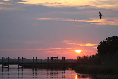 Photograph - Sunset Over The Wetlands by Robert Banach