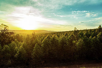 Photograph - Sunset Over Trees And Hills In South Africa by Susan Schmitz