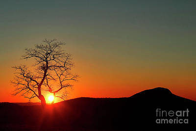 Photograph - Sunset Over Virginia by Darren Fisher