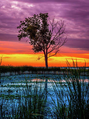 Photograph - Sunset Over Wetlands Pond by Optical Playground By MP Ray