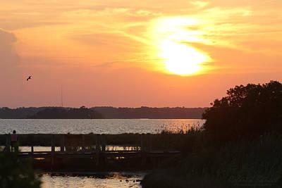 Photograph - Sunset Over Wetlands Walkway by Robert Banach