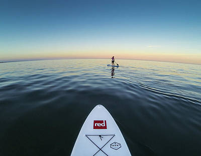 Photograph - Sunset Paddle Boarding by Will Gudgeon