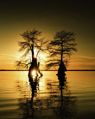 Photograph - Sunset Pair by Alan Raasch