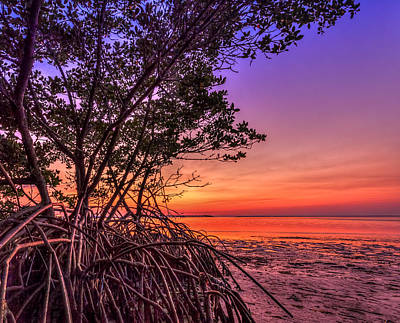 Sandy Cove Photograph - Sunset Palette by Marvin Spates