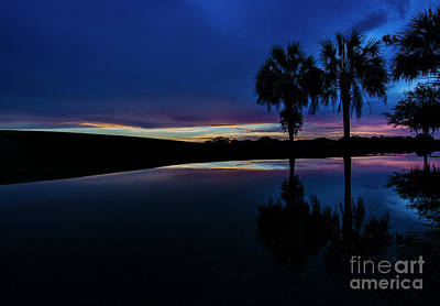 Print featuring the photograph Sunset Palms by Brian Jones