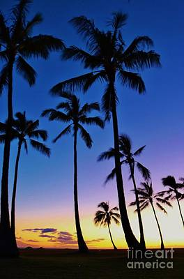 Photograph - Sunset Palms by Craig Wood