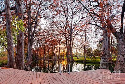 Photograph - Sunset Peaking Through Bald Cypresses Branches At Blue Hole Regional Park - Wimberley Texas Hills by Silvio Ligutti