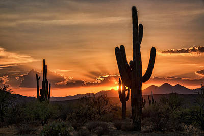 Photograph - Sunset Peaking Through The Arms Of The Mighty Saguaro  by Saija Lehtonen