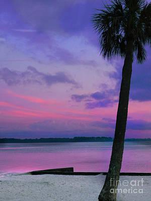 Painting - sunset Pine island by Expressionistart studio Priscilla Batzell