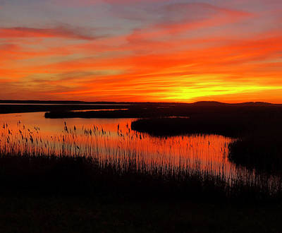 Photograph - Sunset Plum Island by Nancy Landry
