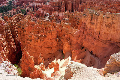 Photograph - Sunset Point Bryce Canyon Utah 01 by Thomas Woolworth