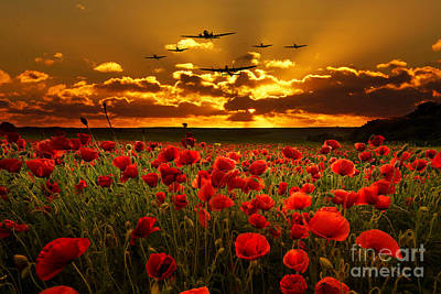 Poppies Field Digital Art - Sunset Poppies The Bbmf by J Biggadike