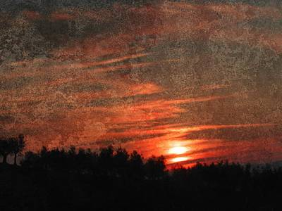 Photograph - Sunset Reflection by Dorothy Berry-Lound
