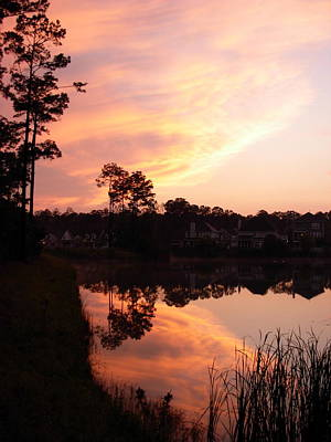 Photograph - Sunset Reflection by Jeanne Kay Juhos