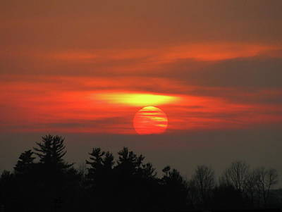 Photograph - Sunset by Rhonda Jones
