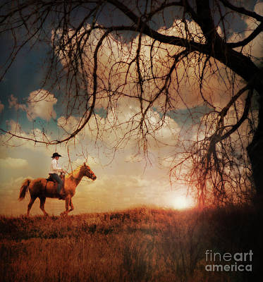Photograph - Sunset Ride by John Anderson
