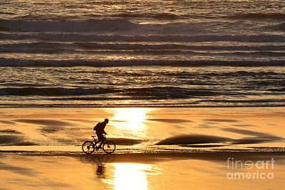Photograph - Sunset Rider by Tanya Searcy