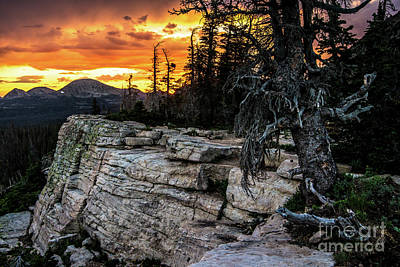 Photograph - Sunset Ridge - Uinta Mountain Range - Utah by Gary Whitton