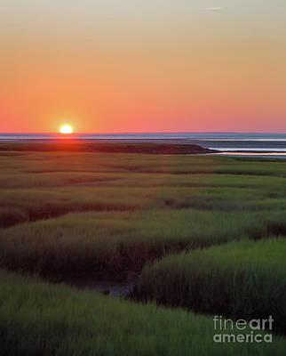 Photograph - Sunset Romance by Michelle Wiarda