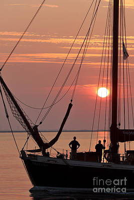 Photograph - Sunset Sail by Howard Ferrier