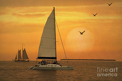 Sailboat Photograph - Sunset Sail by Juli Scalzi