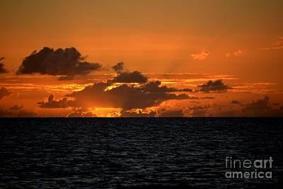 Photograph - Sunset Sail by Tamara Michael