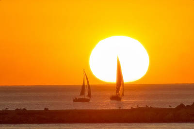 Photograph - Sunset Sails by Christopher Purcell