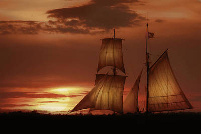 Photograph - Sunset Sails by Lori Deiter