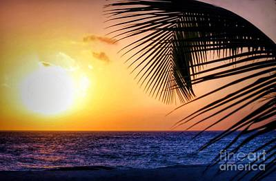 Photograph - Sunset Salute In Aruba by Polly Peacock