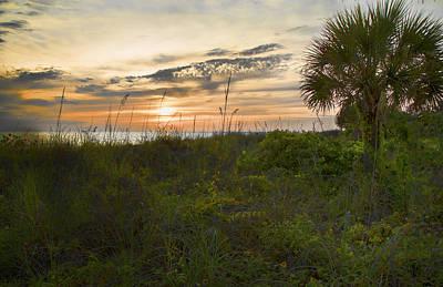 Photograph - Sunset Serenity by Shari Jardina