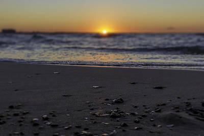 Photograph - Sunset Shells by Pete Federico