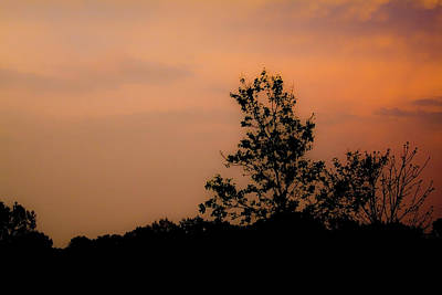 Photograph - Sunset Silhouette by Gwen Vann-Horn