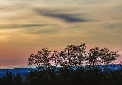 Photograph - Sunset Silhouette by Judy Wright Lott