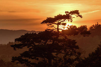 Photograph - Sunset Silhouette by Keith Boone