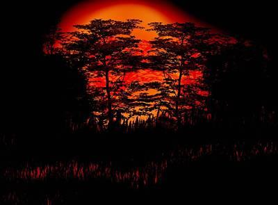 Digital Art - Sunset Silhouette  by Lisa Stanley