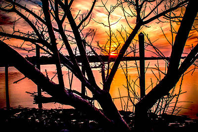 Photograph - Sunset Silhouette  by Pete Federico