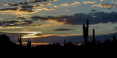 Photograph - Sunset Silhouette by Teresa Wilson