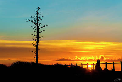 Photograph - Sunset Silhouetted Snag by Dee Browning