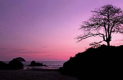 Photograph - Sunset Silhouettes At Espadilla Beach by Carolyn Derstine