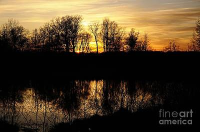 Photograph - Sunset Silhouettes by Larry Ricker