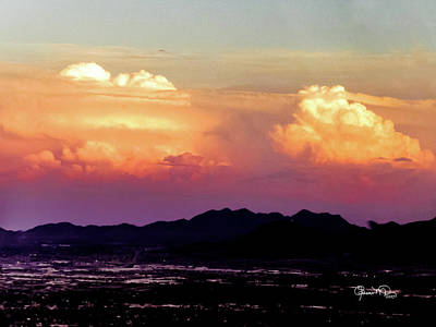 Photograph - Sunset Silhouettes by Susan Molnar