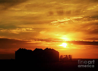 Photograph - Sunset Silos by Clare VanderVeen