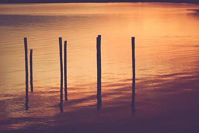 Photograph - Sunset Silouette by Amber Dopita