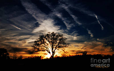 Photograph - Sunset Skies by Jinx Farmer