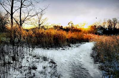 Connecticut Winter Photograph - Sunset Snow Steps by Diana Angstadt
