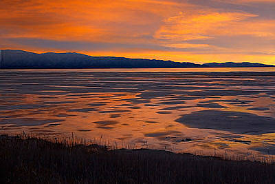 Photograph - Sunset,  South Shore, Great Salt Lake by Douglas Pulsipher
