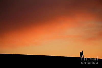 Photograph - Sunset Stroll by Elizabeth Winter