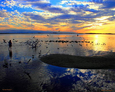 Photograph - Sunset Supper by Larry Beat
